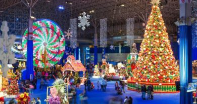 Navy Pier Winter Wonderfest