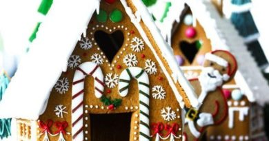 Gingerbread House Millennium Park