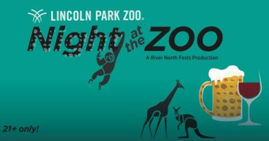 Lincoln Park Zoo Night at the Zoo