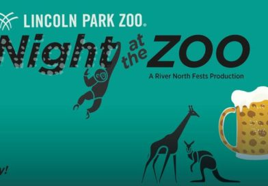 Lincoln Park Zoo – Night at the Zoo