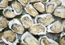Our Favorite 1$ Oysters Chicago Updated 2019