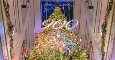 900 Shops Tree Lighting