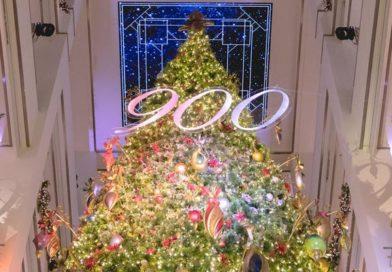 Illuminate 900: Holiday Tree Lighting at the 900 Shops