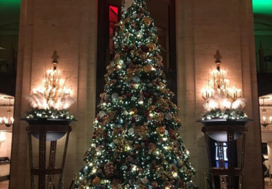 149th Annual Holiday Tree Lighting Ceremony at the Palmer House
